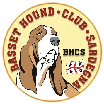 basset hound club sardegna