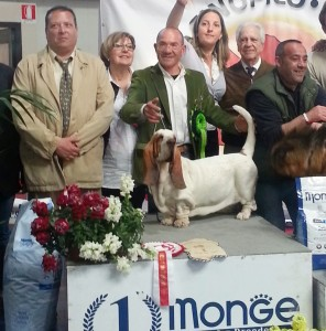 Nanà winning Best in Show